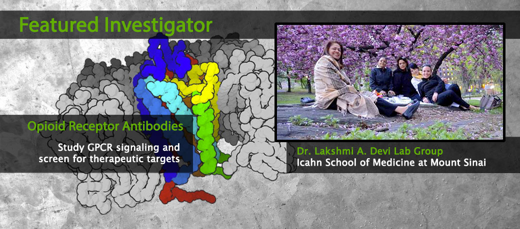 Featured Investigator