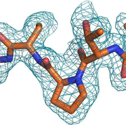complement, c1, proenzyme,cc1, Mannan-Binding Lectin Serine Protease 1, MASP-1,Mannan-Binding Lectin Serine Protease 2, MASP-3