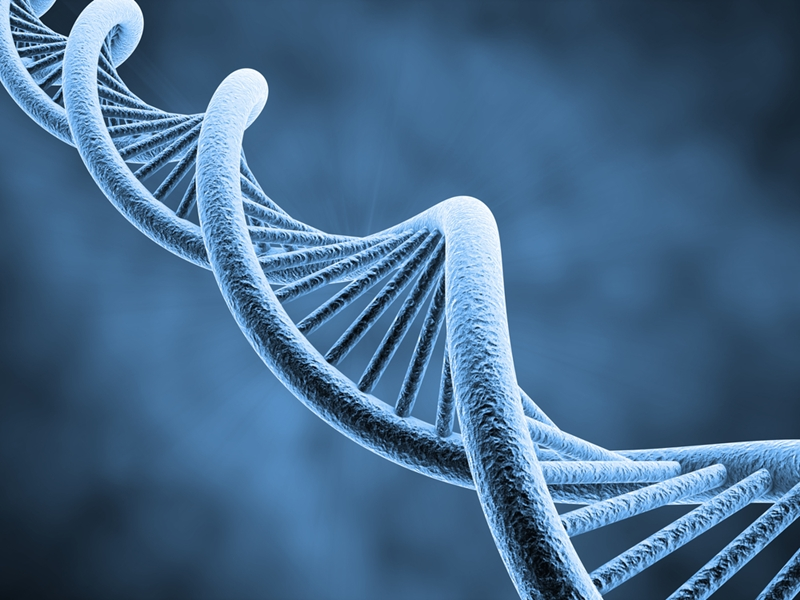 Gene editing could transform lab research.