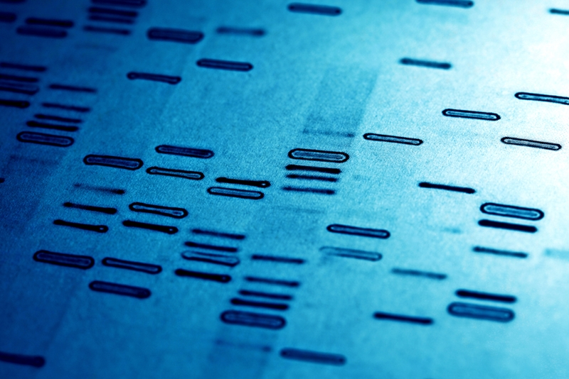 A variety of companies are revolutionizing DNA sequencing.